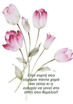 Name Day, Good Morning, Happy Birthday, Names, Plants, Buen Dia, Happy Brithday, Bonjour, Saint Name Day