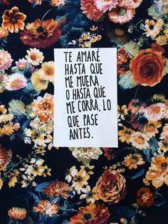 Te amaré hasta que me muera  |  Alfonso Casas