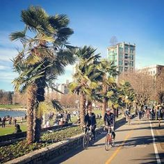 Meanwhile in Vancouver: the city has been enjoying some spring-like weather lately, and we couldn't resist sharing this scene from English Bay Beach.   #exploreBC #exploreCanada (Photo: pwittal via Instagram)