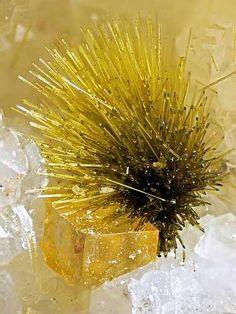 Olivenite & Fluorite - Clara Mine, Wolfach, Black Forest, Baden-Württemberg, Germany