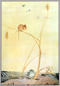 """The Town Mouse and the Country Mouse. From """"The Fables of Aesop"""" illustrated by Edward J. Detmold, 1909"""