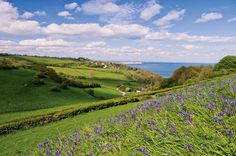 Culver Down from above Luccombe, Isle of Wight, England