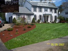 frontyard colonial home with japanese