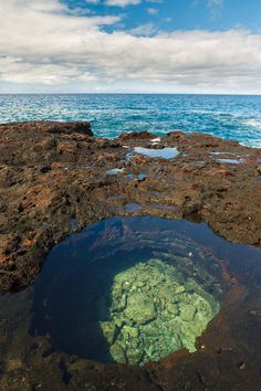 Tide Pool - Hulopoe Bay Photograph by Quincy Dein - Printscapes - Tide Pool - Hulopoe Bay Fine Art Prints and Posters for Sale