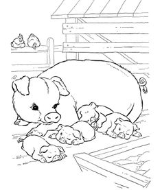 Pig Family Coloring Pages