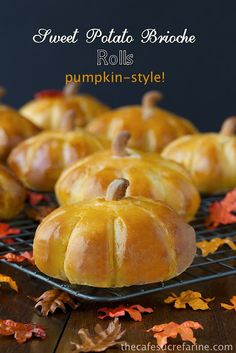 Adorable! --> Sweet Potato Brioche Rolls - Pumpkin Style!