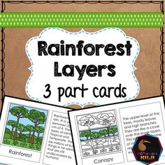 3 part cards for children to learn the features of the layers of the rainforest. Beautiful graphics which isolate each layer in Montessori style with a brief explanation of the features of that layer. INCLUDED- Layers of rainforest 3 part cards - in full color- Blank copies for students to make their own booklet with layers of rainforest- Labeled diagram with layers of the rainforest.