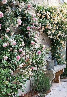 Flower Garden Projects That You Can Do It Yourself - Dream garden - Blumen & Pflanzen Small Courtyard Gardens, Small Courtyards, Small Gardens, Courtyard Design, Courtyard Ideas, Balcony Design, Wall Climbing Plants, Climbing Roses, New Dawn Climbing Rose