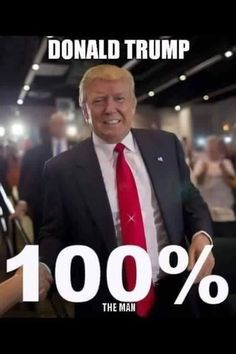 I've supported him since he announced he was running!  DEBRA GIFFORD Donald Trump is an outsider who will shake up Washington, destroy Globalists & most importantly Put America First! (@lovemyyorkie14) | Twitter #VOTETRUMP2016