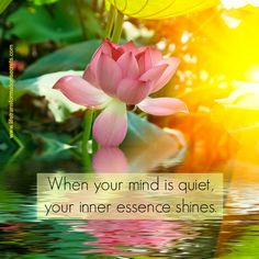 Underneath sadness, grief, doubt, and anger, there's an essence that heals. It's a state of peace and great transformation, and it is who you are. When your mind is quiet, your inner essence shines.