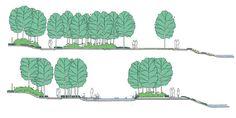 Wenk :: Woodland Reserve Greenway