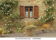 stock-photo-idyllic-window-with-roses-borgo-volpaia-tuscany-italy-146628068.jpg (450×320)
