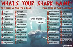 Some #SharkWeek silliness ... use our Shark Name Generator to find out YOUR Shark Name!