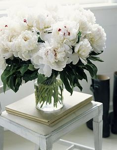 White peonies bouquet on side table. My Flower, Fresh Flowers, White Flowers, Beautiful Flowers, Draw Flowers, Flowers Vase, Bouquet Flowers, Colorful Roses, Peony Flower