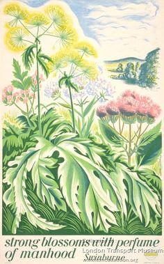 Strong Blossoms ..... ~ John Farleigh