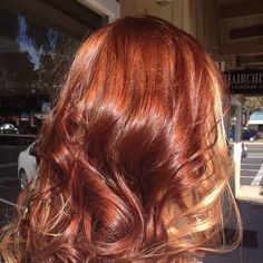 Copper Brown with Blonde Peek-A-Boos By Danielle E