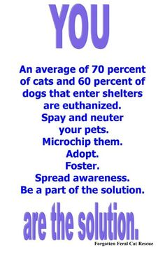 From Forgotten Feral Cat Rescue - I wish ALL would read this and follow IT!!!!!