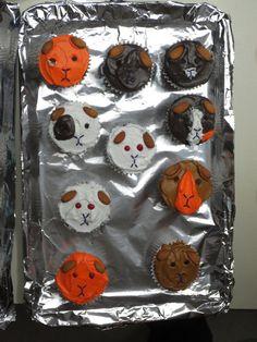 Guinea pig cupcakes.