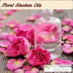 Online Floral Absolute oils on cost-effective Price via Naturesnaturalindia.com. For Shoping Visit Here: https://goo.gl/Mb3gXL