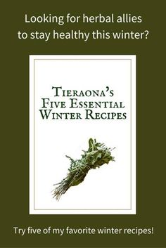 Looking for herbal allies to get you and your family through this cold and flu season? Sign-up for my newsletter and get my recipes for Thyme Cough Syrup, T's Energy Ball Goodies, T's Winter Elixir, Astragalus Chicken Soup, and Elderberry Syrup!   Visit Drlowdog.com today to get your copy now!