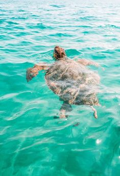10 Of The Best Things To Do In Cape Verde - See the turtles on Boa Vista Cap Verde, Cape Verde Sal, Cape Verde Food, Cape Verde Holidays, Westerns, Verde Island, Overseas Travel, Beautiful Places To Travel, Romantic Travel
