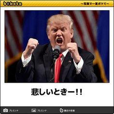 閲覧時間注意 しばらく笑えるページ 『bokete』 - NAVER まとめ