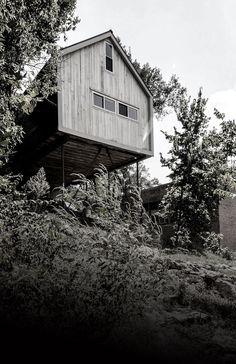 MadHouse,© John Iiams