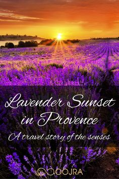 """""""The air is saturated with the minty floral fragrance of lavender."""" Join me on my fragrant stroll through Provence, France in this personal travel story. oojra.com/..."""