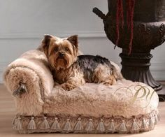Luxury Pet Bed — hand-upholstered in a furry commercial-grade fabric and constructed of solid wood. With tassels and trim, it provides an elegant perch for your pet. The large sized version is only 36 inches by 17 inches, so it may be a bit small for most Cute Puppies, Cute Dogs, Dogs And Puppies, Yorkies, Yorshire Terrier, Dog Furniture, Pet Beds, Dog Life, Chihuahua