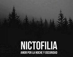 Amor por la noche