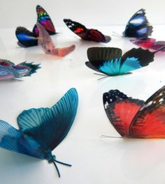 99497765c 10 Natural butterflies 3d butterfly stickers handmade, butterfly decor for  the wall,sun catchers,home,bedroom, lounge,window decorations