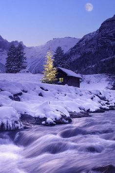 ♥ tiny cabin in the mountains and next to a stream..