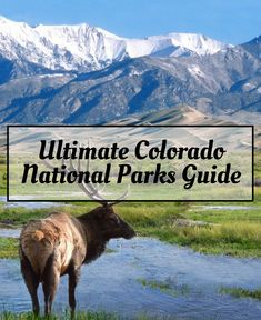 Ultimate Colorado National Parks Guide   #EndlessCaravan #colorado