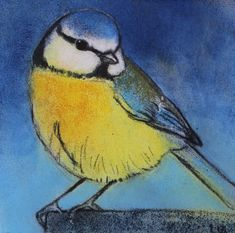 Pastel drawings of animals and portraits Loes Botman Bird Drawings, Animal Drawings, Bird Sketch, Pastel Drawing, Watercolor Bird, Watercolor Techniques, Bird Art, Beautiful Paintings, House Painting