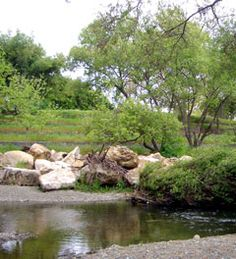 Guadalupe River Park. San Jose, CA - so many people call the banks of the Guadaloupe home.