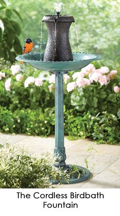 Battery operated fountain that can be placed into any birdbath. An internal pump continuously recirculates water up through its base and projects high plumes. Garden Sink, Porch Garden, Bird Bath Fountain, Patio Fountain, Fountain Ideas, Bird House Plans, Garden Fountains, Water Fountains, Backyard Water Feature