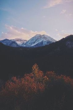 Find images and videos about photography, nature and indie on We Heart It - the app to get lost in what you love. Beautiful World, Beautiful Places, Beautiful Scenery, Landscape Photography, Nature Photography, Photography Tricks, Digital Photography, Travel Photography, All Nature