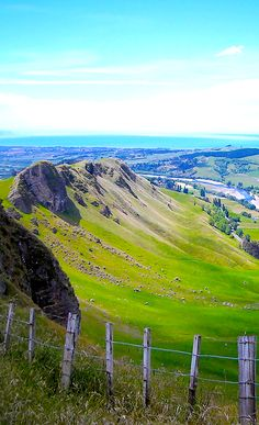 Sail into Hawkes Bay while exploring New Zealand. Known for its sunshine, this region is also home to award-winning wines. New Zealand Cruises, New Zealand Travel, The Beautiful Country, Beautiful Places, New Zealand Image, New Zealand Holidays, Kiwiana, South Pacific, Australia Travel