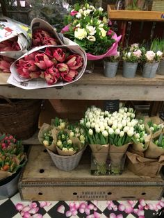 <3  Flower Market~Every Saturday I Go To Flower Market~Kimberly Stanley