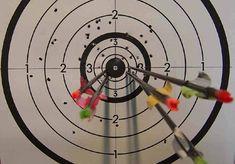Différentes disciplines | www.archers-de-richemont-vannes.fr