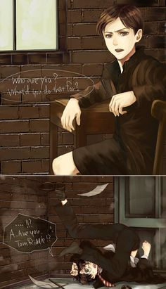 Tom Riddle and Harry Potter