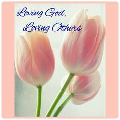 Mengasihi Allah, Mengasihi Sesama...