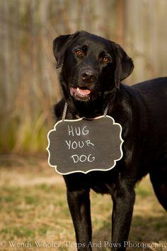 Hug your dog!! :) <3