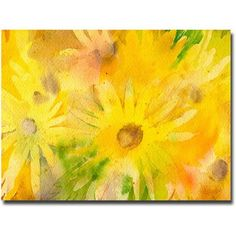 Antonio Raggios Petals in Focus 2 Piece Gallery Wrapped Canvas Set 24X36