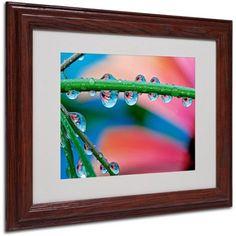 Trademark Fine Art Secret Worlds Canvas Art by Steve Wall, Wood Frame, Size: 16 x 20, Multicolor