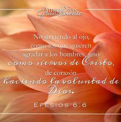 Efesios 6:5-8 Siervos, obedeced a vuestros amos terrenales con temor y temblor, con sencillez de vuestro corazón, como a Cristo; no sirviendo al ojo, como los que quieren agradar a los hombres, sino como siervos de Cristo, de corazón haciendo la voluntad de Dios; sirviendo de buena voluntad, como al Señor y no a los hombres, sabiendo que el bien que cada uno hiciere, ése recibirá del Señor, sea siervo o sea libre.♔
