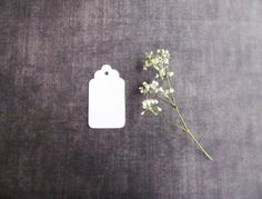 100 Small White Tags Gift Tags Party Favor Tags by CatchSomeRaes