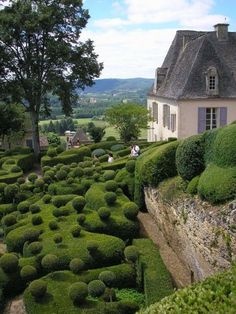 The Marqueyssac garden, France OMG..I can't even imagine how long it must the to groom those shrub