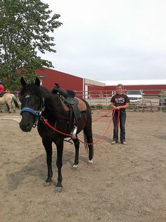 Driving practice! This is a new method that we, at SPURS, have been practicing for only a few years to allow some riders a different opportunity to learn!