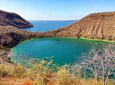 Crater view, Isla Isabela | Galapagos Islands